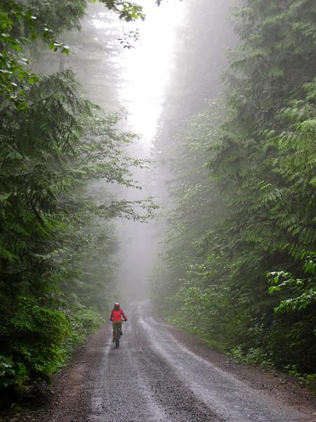 Squamish - Mountain Biking