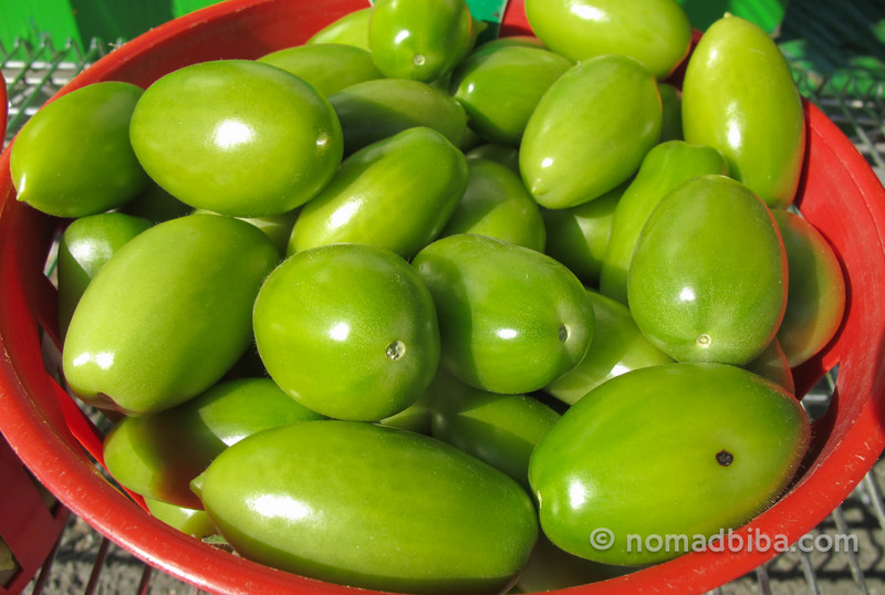 Green tomatoes at the Jean Talon market in Montreal, Canada
