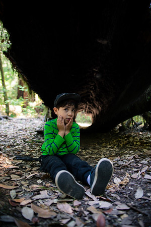 DAISY_COBY_2017_NORCAL_CAMPING_0036