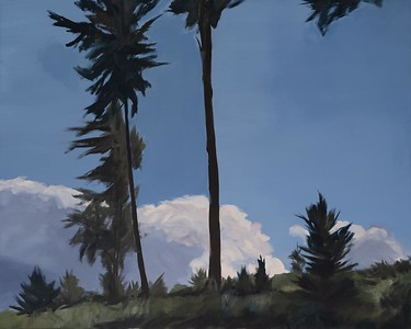 Adirondack Pines