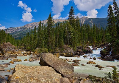 Kicking Horse and Yoho River Confluence