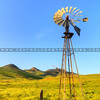 turri-road-windmill_4513