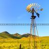 turri-road-windmill_4513