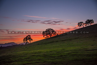country sunset-1243