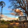 windmill_6206