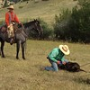 doctoring calves with Whit and Teddy (2007)