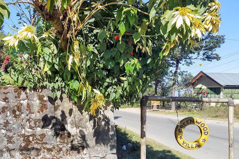Kisama Nagaland