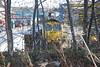 66 550 <br /> <br /> through trees