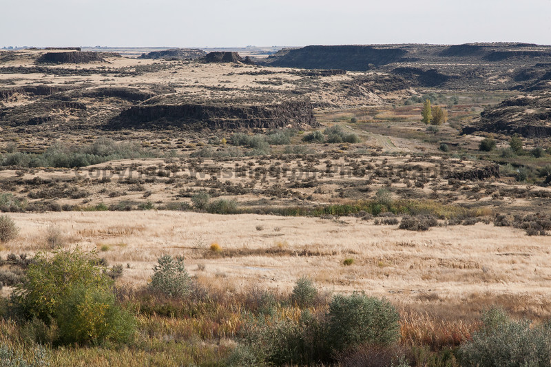 Channeled Scablands 13