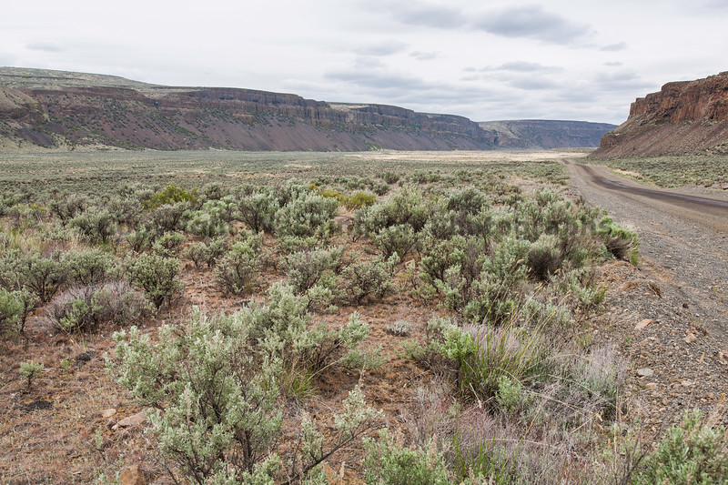 Moses Coulee 13