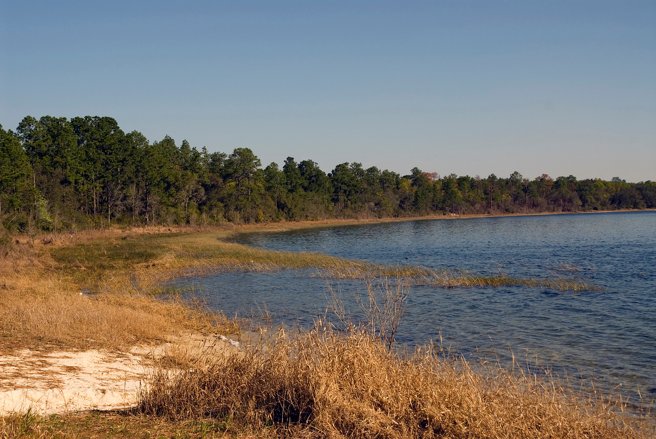 Magnolia Lake, Camp Blanding <br /> PHOTO CREDIT: M. Timothy O'Keefe / Florida Trail Association