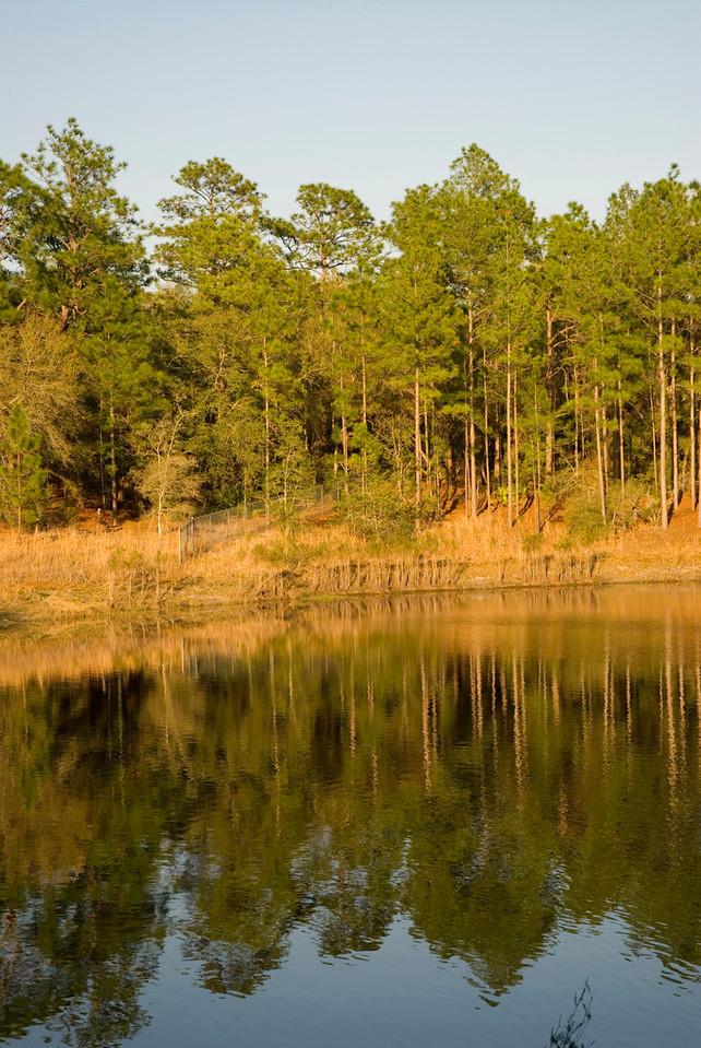 Camp Crystal Lake<br /> PHOTO CREDIT: M. Timothy O'Keefe / Florida Trail Association