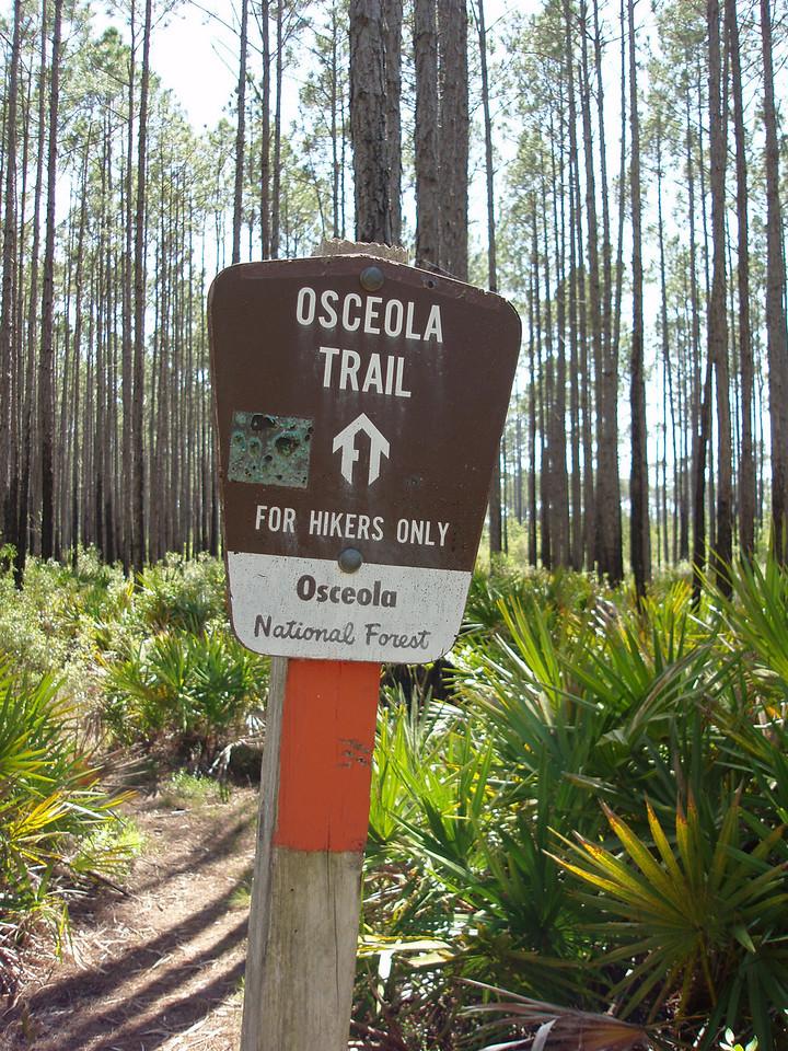 Along the Florida Trail<br /> PHOTO CREDIT: Robert Coveney / Florida Trail Association