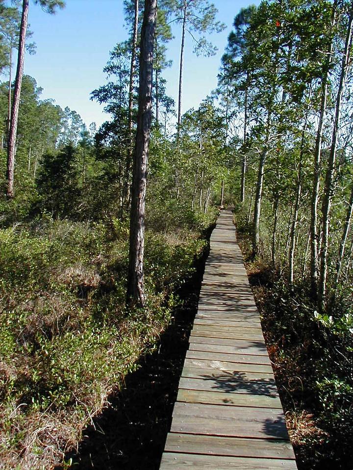 Osceola boardwalk<br /> PHOTO CREDIT: Deb Blick/ Florida Trail Association