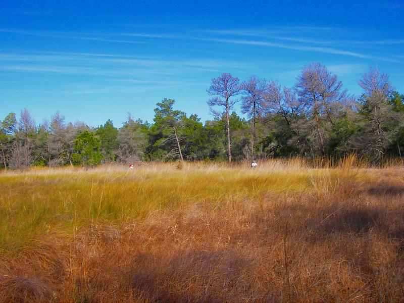 Backpacking Hopkins Prairie<br /> photo credit: Deb Blick / Florida Trail Association