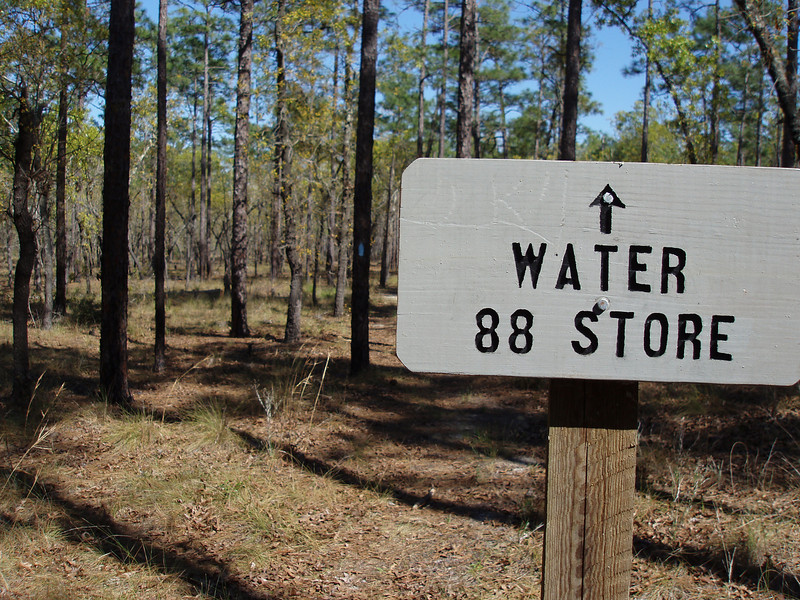 Blue blaze to The 88 Store<br /> photo credit: Robert Coveney / Florida Trail Association