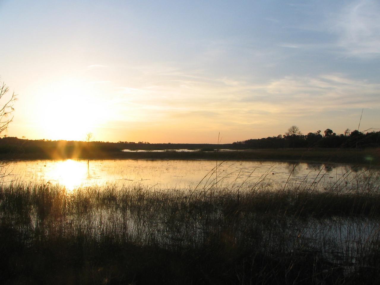 Prairie sunset<br /> photo credit: Janette Davison/ Florida Trail Association