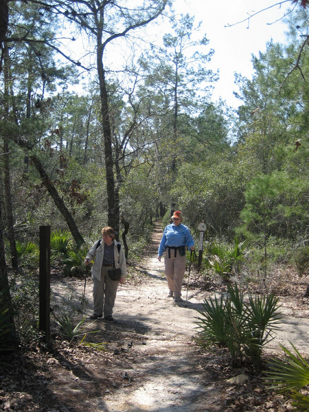 Hiking Kerr Island<br /> photo credit: Sandra Friend / Florida Trail Association