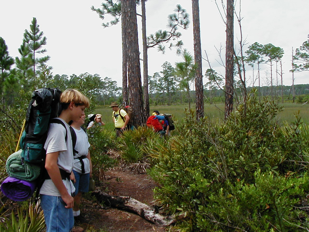 Young hikers in the Ocala National Forest<br /> photo credit: Deb Blick / Florida Trail Association