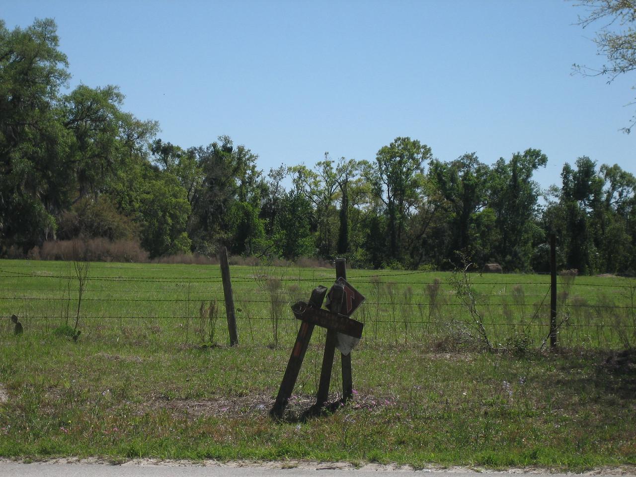 Florida Trail crossing, SR 42<br /> photo credit: Sandra Friend / Florida Trail Association