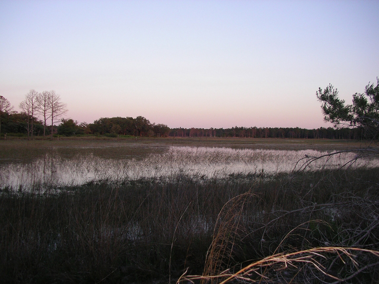 Wet prairie at sunset<br /> Photo credit: Ian Brown / Florida Trail Association