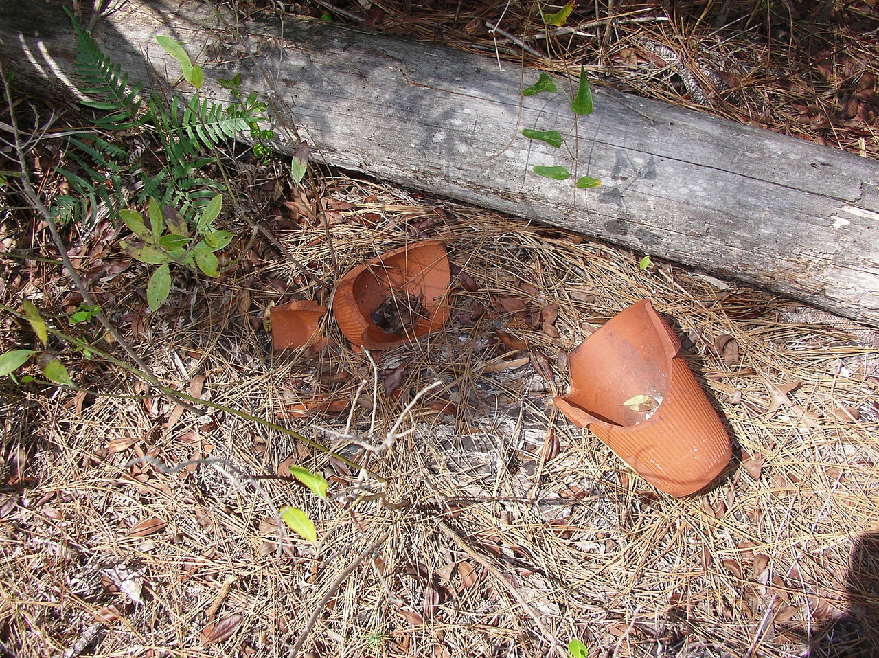 Historic turpentine pots in the forest<br /> Photo credit: Ian Brown / Florida Trail Association