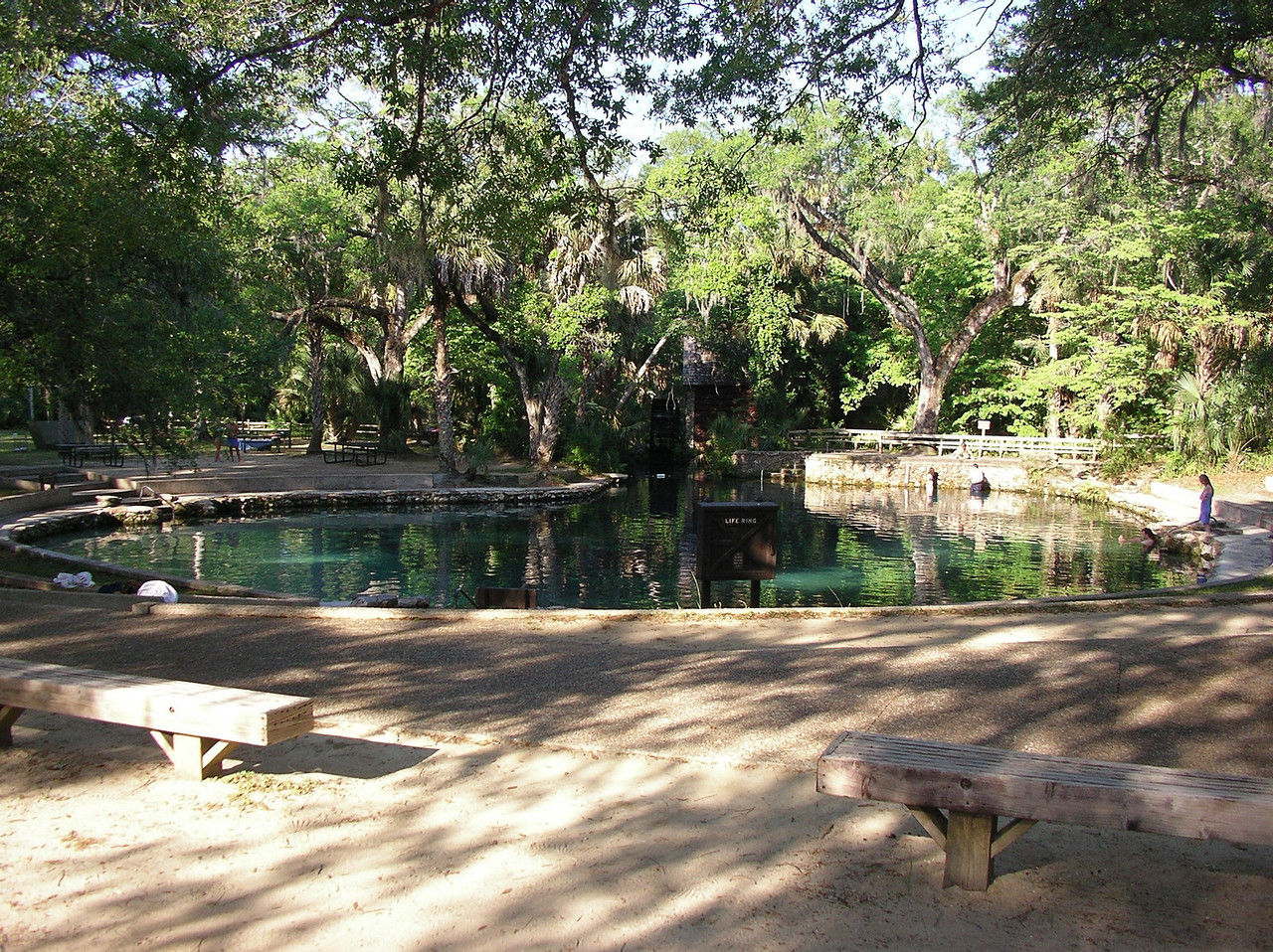 Juniper Springs swimming area<br /> Photo credit: Ian Brown / Florida Trail Association