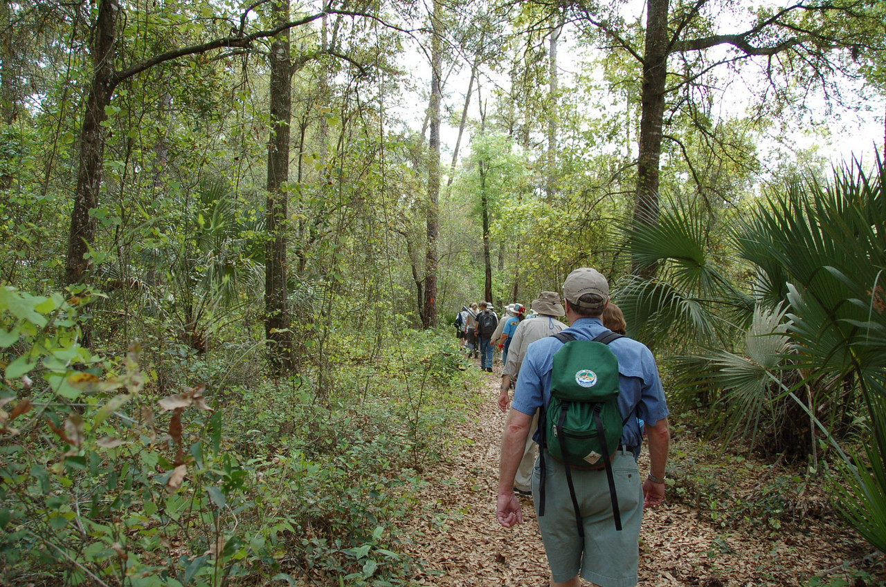 Hiking near Clearwater Lake<br /> photo credit: Kent Wimmer / Florida Trail Association