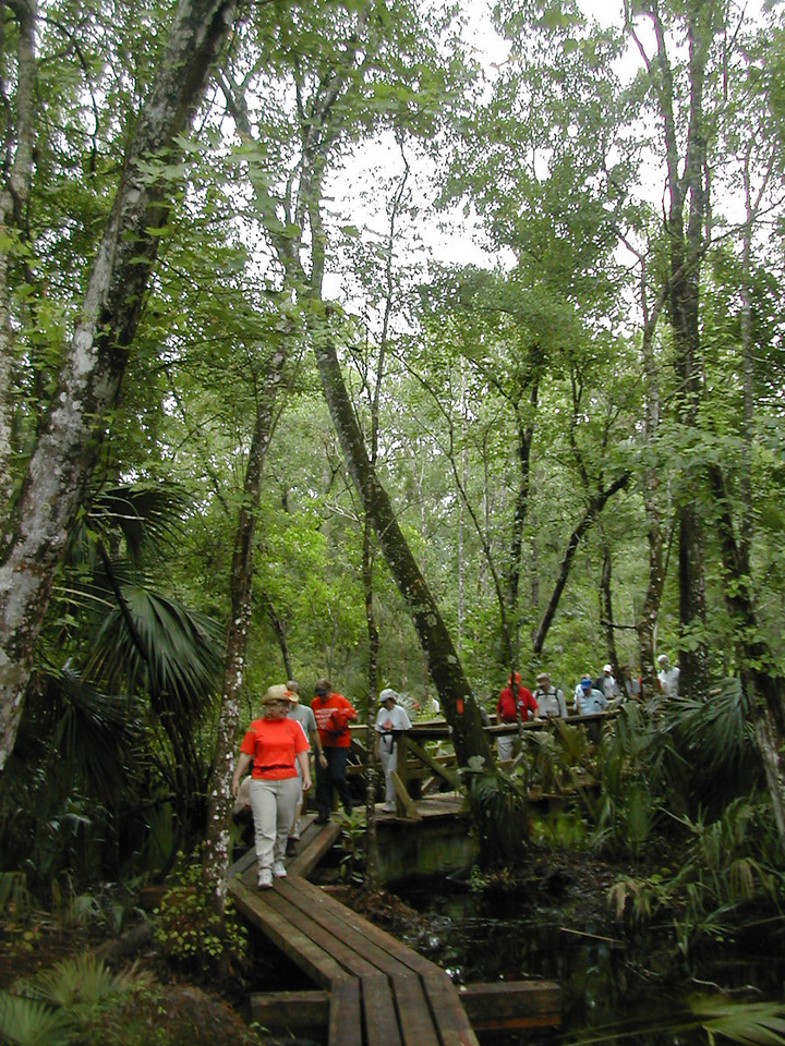 Hikers at Eaton Creek<br /> photo credit: Sandra Friend / Florida Trail Association