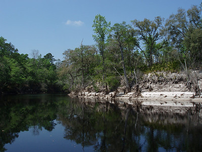 Suwannee (East of White Springs)