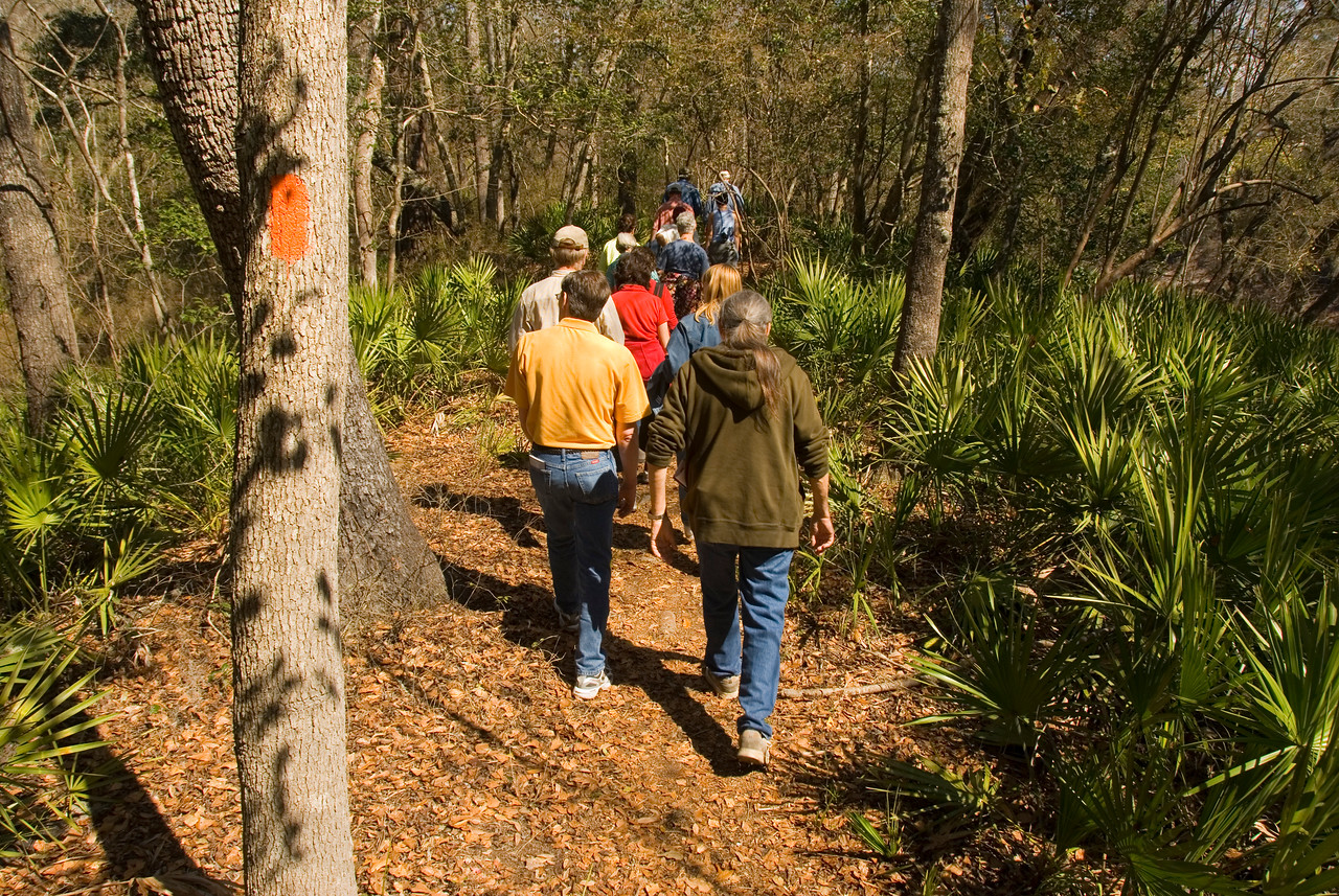 Along the Florida Trail, Stephen Foster Folk Culture State Park<br /> PHOTO CREDIT: M. Timothy O'Keefe / Florida Trail Association