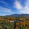 Sheherd Lake Area in Fall