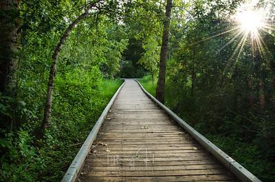 Blackwell Island Path