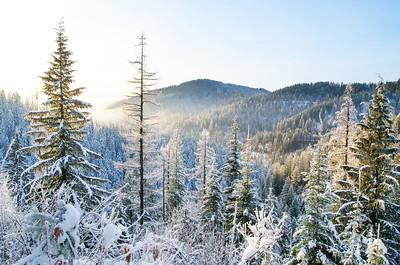 Fernan Saddle Winter