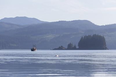 Fishing Boats - Knight Inlet, British Columbia, Canada