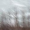 Sky Ice Panned