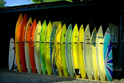 Hale'iwa Town  Surfers Rainbow   Hale'iwa, World Famous Surf Town North Shore of O'ahu, Hawai'i