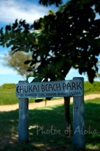 Ehukai Beach Park North Shore of O'ahu, Hawai'i