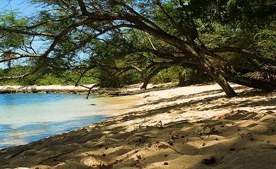 Hale'iwa Bay beach