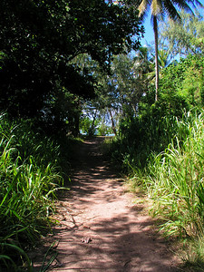 North Shore Bike Path  Sandy pathNorth Shore of O'ahu, Hawai'i