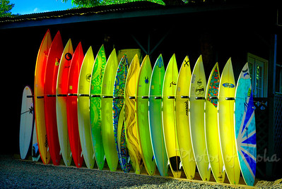 Colorful surfboards in the sunlight in Hale'iwa, world famous surf townHale'iwa, North Shore of O'ahu, Hawai'i