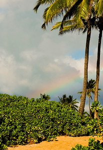 Rainbow Can't have rainbows without rain  Hale'iwa, North Shore of O'ahu, Hawai'i 2004