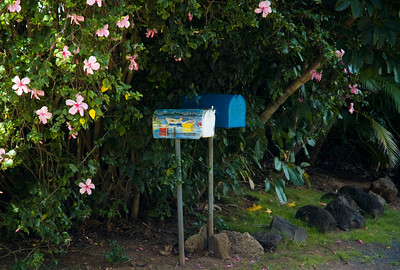Cute mailbox along the North Shore Ke Ala Pupukea Bike Path, Sunset Beach to Three Tables   North Shore, Oahu, Hawaii