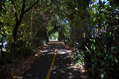 North Shore Ke Ala Pupukea Bike Path  North Shore, Oahu, Hawaii