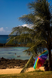 Rainbow umbrella on Pupukea Beach at Shark's Cove  North Shore, Oahu, Hawaii