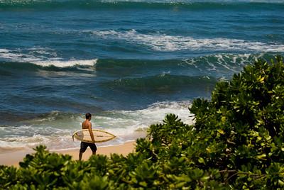 090913 120857 surfer