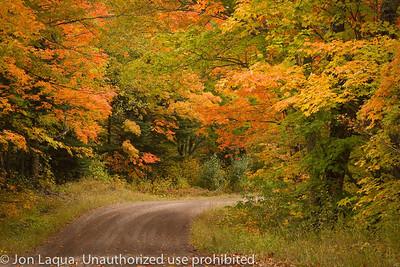 Fall North Shore