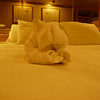 When we got back to our rooms after dinner, what should be waiting patiently on our bed?  Yah, a Towel Piggy!