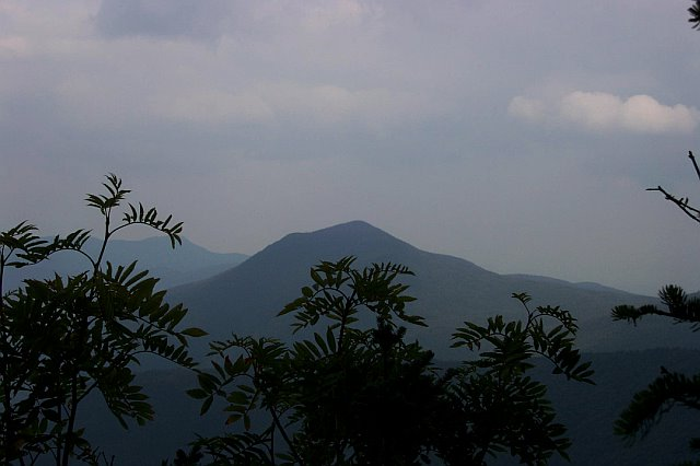 View of Mt. Passaconaway (4043') from Middle Tripyramid.