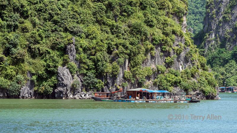 Fishing village by the cliffs, Ha Long Bay, north Vietnam